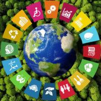 Cuatro enfoques del desarrollo que debes conocer
